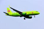 まいけるさんが、スワンナプーム国際空港で撮影したS7航空 A320-214の航空フォト(写真)