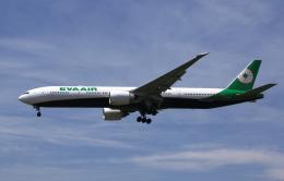 MOHICANさんが、福岡空港で撮影したエバー航空 777-36N/ERの航空フォト(写真)