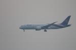 canon_leopardさんが、中部国際空港で撮影したタイ国際航空 787-8 Dreamlinerの航空フォト(写真)
