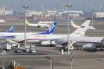 OS52さんが、羽田空港で撮影したロシア航空 Il-96-300の航空フォト(写真)