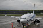東亜国内航空さんが、長崎空港で撮影した全日空 737-881の航空フォト(写真)
