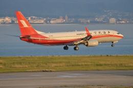 amagoさんが、関西国際空港で撮影した上海航空 737-86Dの航空フォト(写真)
