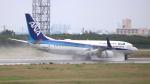 誘喜さんが、宮古空港で撮影した全日空 737-881の航空フォト(写真)