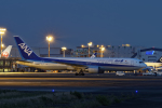 ShiShiMaRu83さんが、伊丹空港で撮影した全日空 767-381の航空フォト(写真)