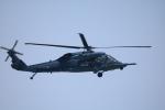 msrwさんが、茨城空港で撮影した航空自衛隊 UH-60Jの航空フォト(写真)
