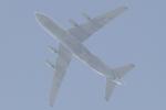 多楽さんが、成田国際空港で撮影したヴォルガ・ドニエプル航空 An-124-100 Ruslanの航空フォト(写真)
