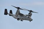 ばとさんが、岩国空港で撮影したアメリカ海兵隊 MV-22Bの航空フォト(写真)