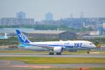 toyoquitoさんが、伊丹空港で撮影した全日空 787-8 Dreamlinerの航空フォト(写真)