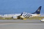 sachiさんが、関西国際空港で撮影した厦門航空 737-85Cの航空フォト(写真)