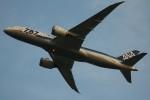 コギモニさんが、小松空港で撮影した全日空 787-881の航空フォト(写真)