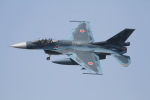 go44さんが、岐阜基地で撮影した航空自衛隊 F-2Aの航空フォト(写真)
