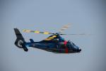 brasovさんが、静浜飛行場で撮影した静岡県警察 AS365N1 Dauphin 2の航空フォト(写真)