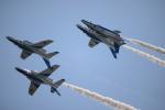 brasovさんが、静浜飛行場で撮影した航空自衛隊 T-4の航空フォト(写真)