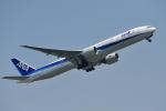 saoya_saodakeさんが、成田国際空港で撮影した全日空 777-381/ERの航空フォト(写真)