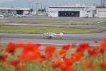 神宮寺ももさんが、高松空港で撮影した航空大学校 A36 Bonanza 36の航空フォト(写真)