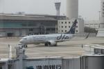 TAOTAOさんが、南京禄口国際空港で撮影した厦門航空 737-85Cの航空フォト(写真)