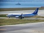 いおんさんが、関西国際空港で撮影した全日空 737-881の航空フォト(写真)