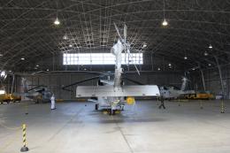 舞鶴飛行場 - Maizuru Air Station [RJBM]で撮影された舞鶴飛行場 - Maizuru Air Station [RJBM]の航空機写真