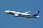kaz787さんが、伊丹空港で撮影した全日空 787-881の航空フォト(写真)
