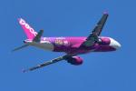 パンダさんが、成田国際空港で撮影したピーチ A320-214の航空フォト(写真)