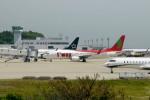 動物村猫君さんが、大分空港で撮影したティーウェイ航空 737-8Q8の航空フォト(写真)
