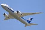 Keitaro Narushimaさんが、成田国際空港で撮影した全日空 787-8 Dreamlinerの航空フォト(写真)
