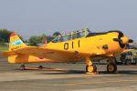 ふるちゃんさんが、静浜飛行場で撮影した航空自衛隊 T-6F Texanの航空フォト(写真)