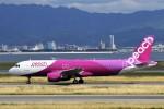 にしやんさんが、関西国際空港で撮影したピーチ A320-214の航空フォト(写真)
