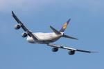 安芸あすかさんが、羽田空港で撮影したルフトハンザドイツ航空 747-830の航空フォト(写真)