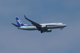 pringlesさんが、長崎空港で撮影した全日空 737-881の航空フォト(写真)