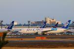 zero1さんが、成田国際空港で撮影した全日空 767-381Fの航空フォト(写真)