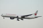 小牛田薫さんが、成田国際空港で撮影したエア・カナダ 777-333/ERの航空フォト(写真)