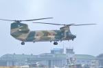 TAKAHIDEさんが、入間飛行場で撮影した航空自衛隊 CH-47J/LRの航空フォト(写真)