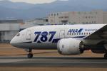 forgingさんが、伊丹空港で撮影した全日空 787-8 Dreamlinerの航空フォト(写真)