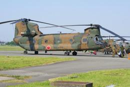 apphgさんが、静浜飛行場で撮影した陸上自衛隊 CH-47Jの航空フォト(写真)