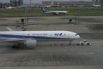 ころころさんが、羽田空港で撮影した全日空 777-381/ERの航空フォト(写真)