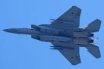 apphgさんが、静浜飛行場で撮影した航空自衛隊 F-15J Eagleの航空フォト(写真)