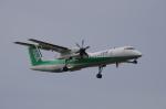 YWさんが、伊丹空港で撮影したANAウイングス DHC-8-402Q Dash 8の航空フォト(写真)