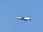kamonhasiさんが、静浜飛行場で撮影した航空自衛隊 T-4の航空フォト(写真)
