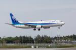 Y-Kenzoさんが、成田国際空港で撮影した全日空 737-881の航空フォト(写真)