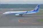 amagoさんが、新千歳空港で撮影した全日空 737-881の航空フォト(写真)