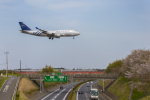 mameshibaさんが、成田国際空港で撮影したチャイナエアライン 747-409の航空フォト(写真)