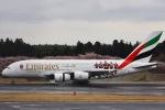 y-dynastyさんが、成田国際空港で撮影したエミレーツ航空 A380-861の航空フォト(写真)