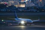 岡崎美合さんが、伊丹空港で撮影した全日空 737-881の航空フォト(写真)