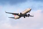 ken_kenさんが、羽田空港で撮影したJALエクスプレス 737-846の航空フォト(写真)