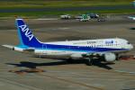 tkosadaさんが、羽田空港で撮影した全日空 A320-211の航空フォト(写真)