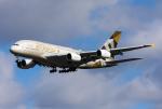 Jeongさんが、ロンドン・ヒースロー空港で撮影したエティハド航空 A380-861の航空フォト(写真)