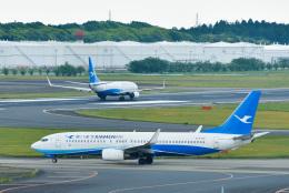 パンダさんが、成田国際空港で撮影した厦門航空 737-86Nの航空フォト(写真)