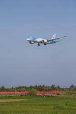 mameshibaさんが、成田国際空港で撮影したTUIフライ・ネーデルランド 787-8 Dreamlinerの航空フォト(写真)