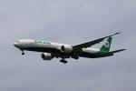 MOHICANさんが、福岡空港で撮影したエバー航空 777-3AL/ERの航空フォト(写真)